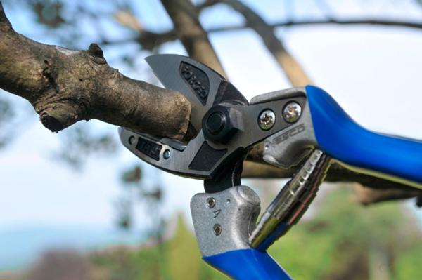 A4 - Anvil pruning shears (size ML)